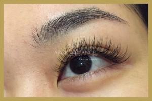 Natural eyelash extension2